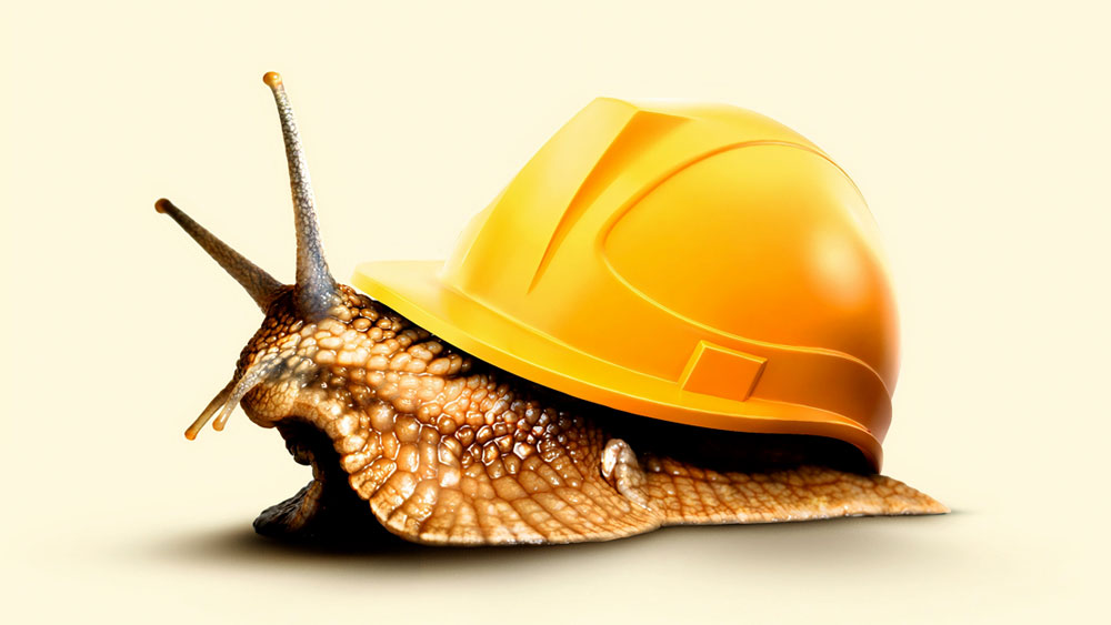 A snail wearing a hard hat as a shell, signifying the slow but steady improvements in the construction industry per the Architectural Billings Index.