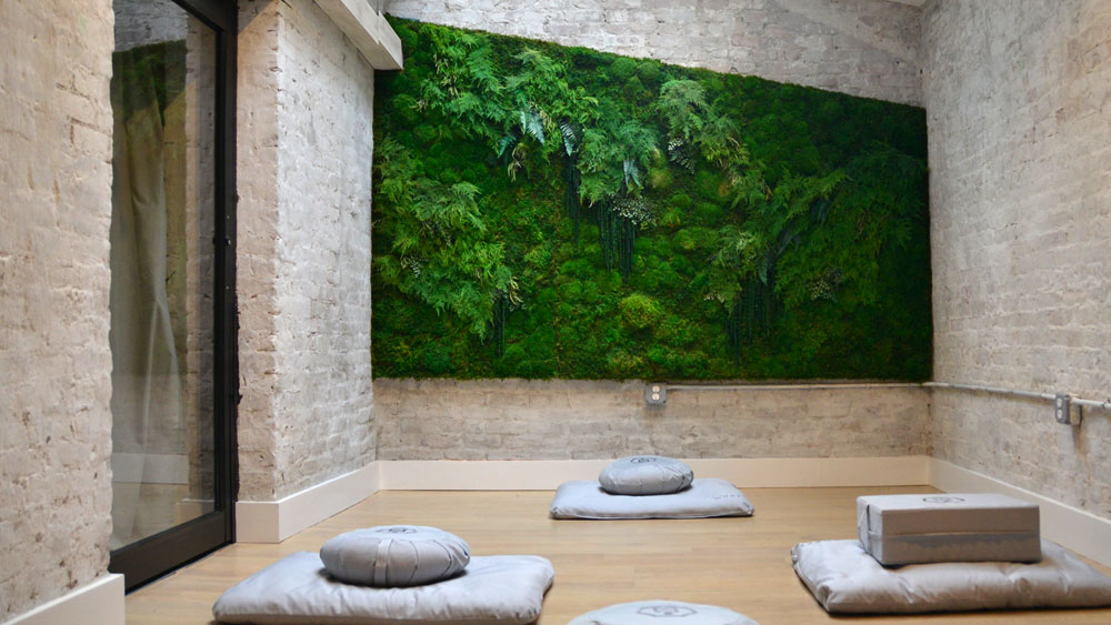 A white washed brick wall meditation room with a pale wood floor, living wall with various green plants, a large skylight, and gray floor pillows.