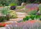 Winding stone path surrounded by colorful native xeriscape plants and pale wood mulch
